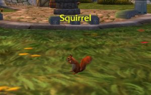 To All The Squirrels Who Cared For Me Achievement Guide